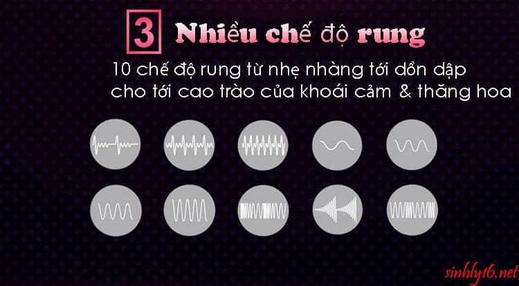 10 chế độ rung của Fun Pulsador
