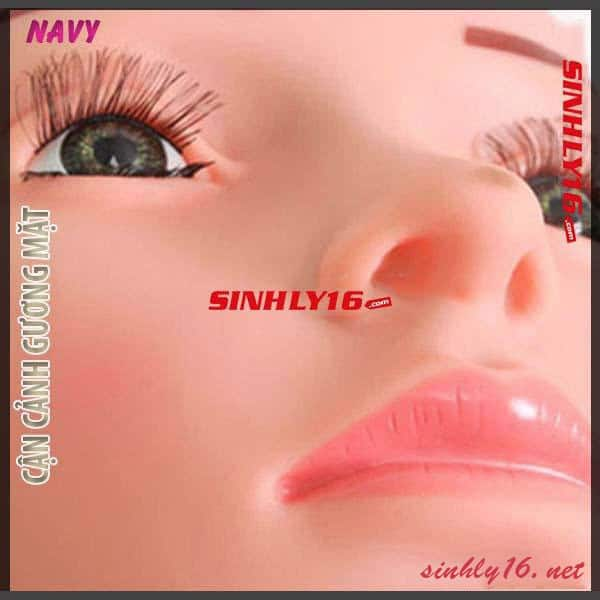 Cận cách gương mặt của búp bê tình dục Navy